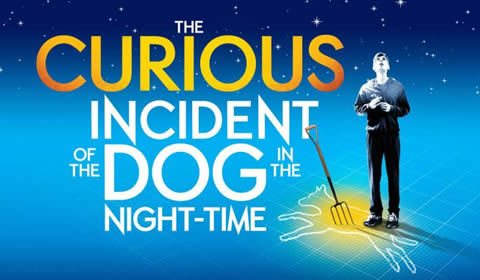 The Curious Incident of the Dog in the Night-Time at Gielgud Theatre tickets