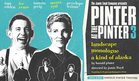 Landscape / A Kind of Alaska at Harold Pinter Theatre tickets