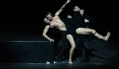 The Great Tamer at Sadler's Wells tickets